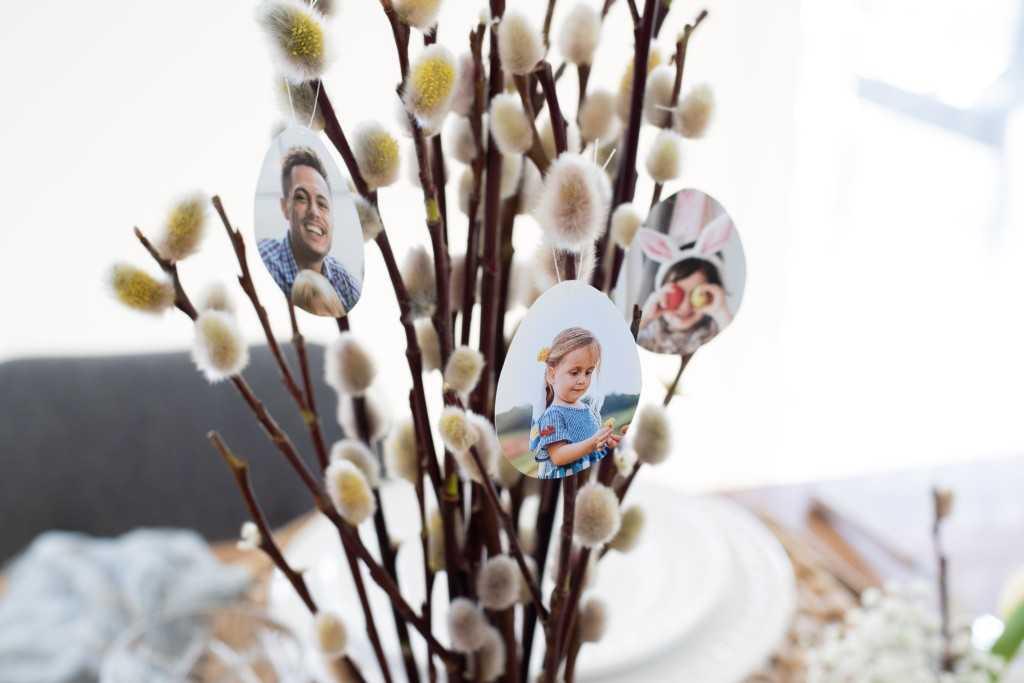 Une Branche De Saule Avec Des œufs De Pâques Photo